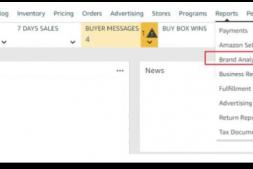 亚马逊品牌分析:如何帮助卖家定位受众?